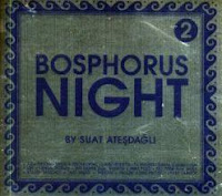 Bosphorus Night 2