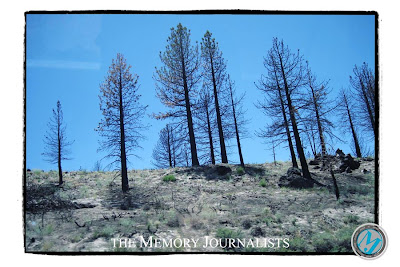 Mammoth Lakes photos 1