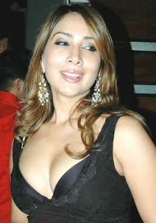 Sexy Kim Sharma Hot Pics & Photos
