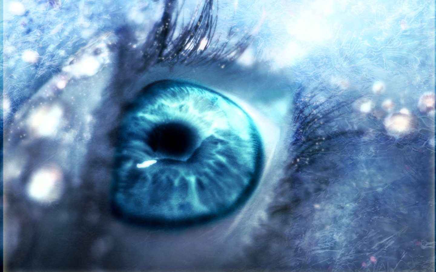 Blue Eyes HD photography images 1440x900 | PIXHOME
