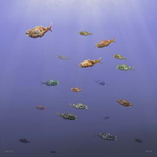 digital imagem - fish minutes