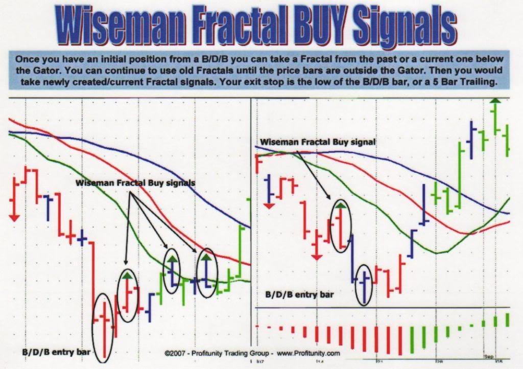 Wiseman forex