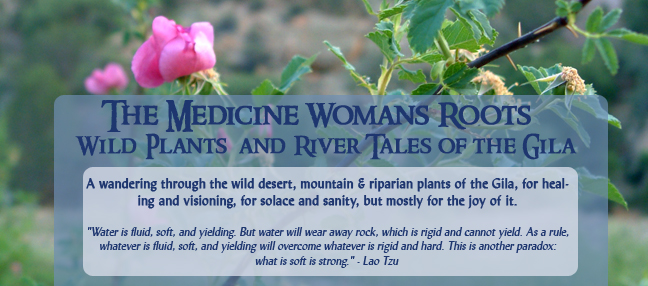 The Medicine Woman's Roots