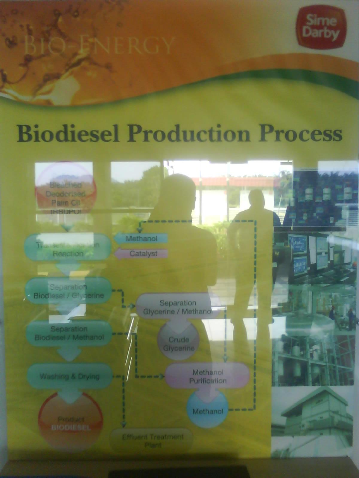 ArMa'S WorLd: Meeting & Site Visit @ Sime Darby Biodiesel ...