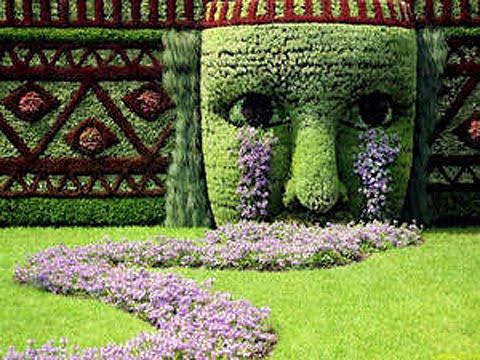 Enredaderas O Trepadoras Para Cubrir Pared En Jardin Terrazas Y Jardines Fotos De Jardines