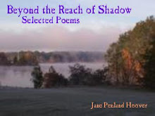 Beyond the Reach of Shadow