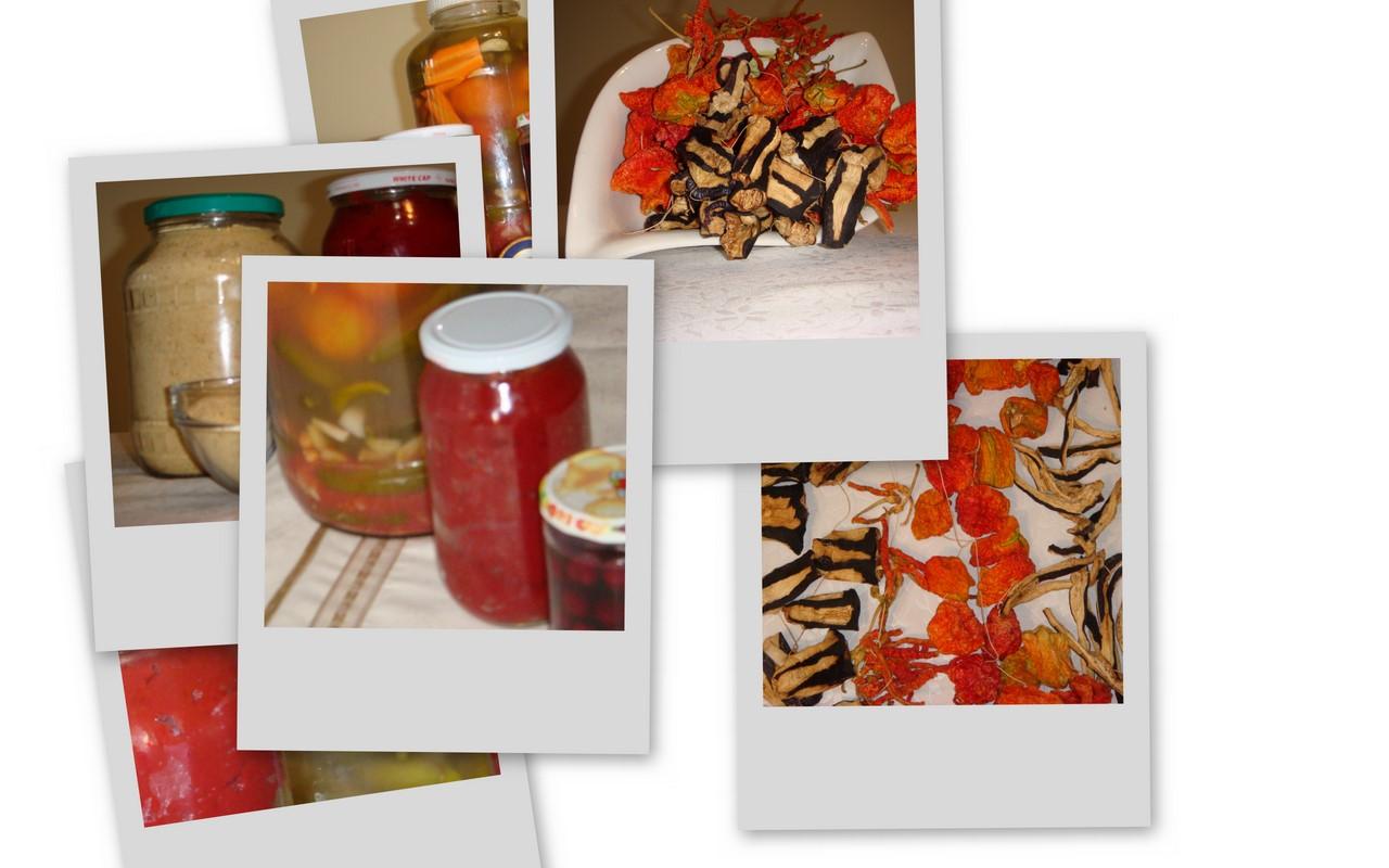 [collage3.jpg]