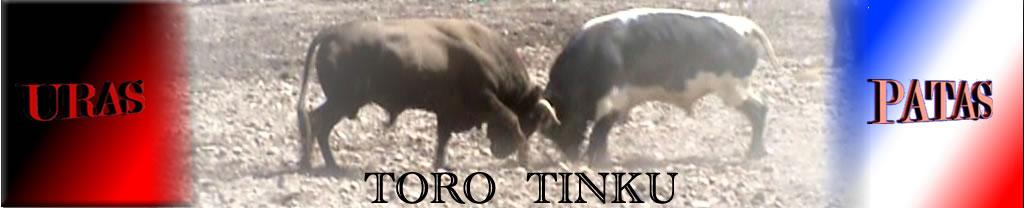 TORO TINKU (Pelea de Toros)