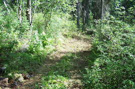 Trail on property