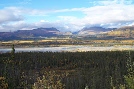 Tetlin Wildlife Refuge ~ Alaska