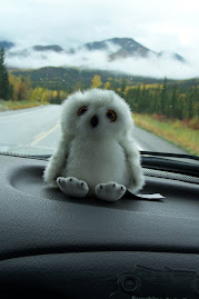 The Baby Snowy Owl mascot