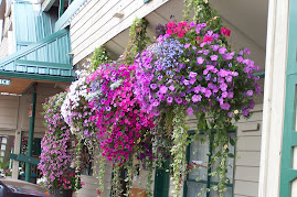 Flowers downtown Whitefish
