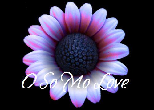 O So Mo Love