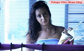 Sexy Sanjana Has Good Offers From Tollywood