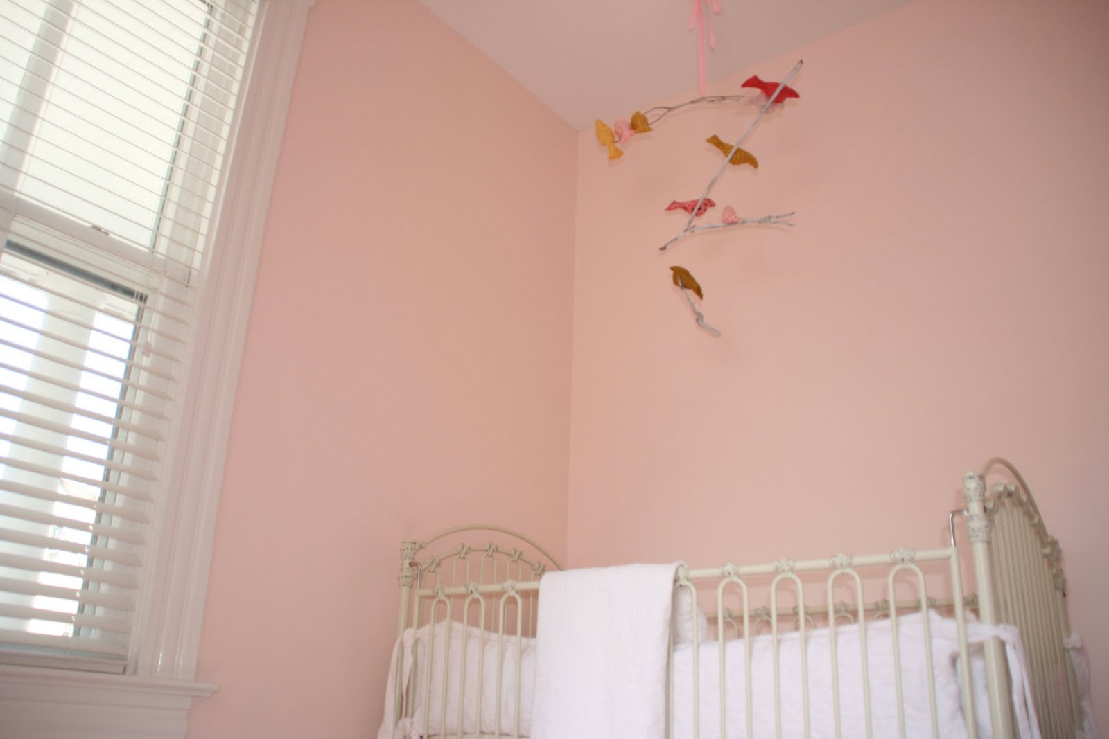 Red Colour Wall: Girl's Rooms: Pink Paint Colors