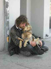 Pet of The Homeless