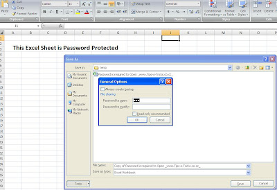 MS Excel 2007 Password Protected