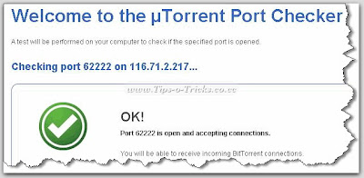 Port-Open-confirmation
