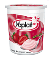 Daily PUMA: YOPLAIT YOGURT New Plastic Container Can't be ...