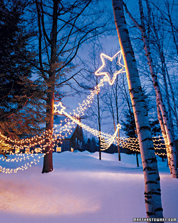 M Cubed Martha Stewart S Christmas Lights