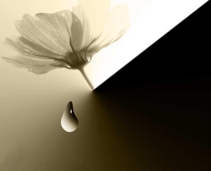 Raiva e Ressentimento e Mágoas