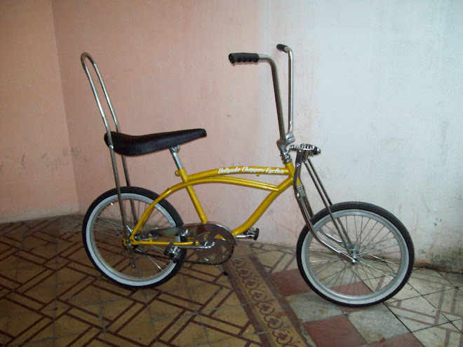 Bicicleta Low estandar rodado 20