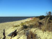 the beach at Jockey's Ridge New Years Day