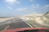 driving north in blowing sand is great from your paint job! - click to enlarge