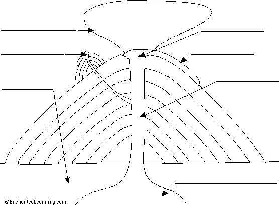 Blank composite volcano diagrams all kind of wiring diagrams amanda bynes composite volcano diagram rh trendingamandabynes blogspot com cinder volcano diagram composite volcano model ccuart Gallery