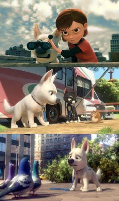 Xxx Hamster Acompañantes Argentina