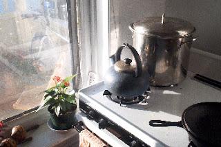 my kitchen window
