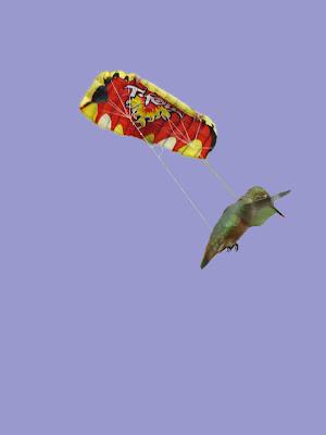 Hummingparachuter