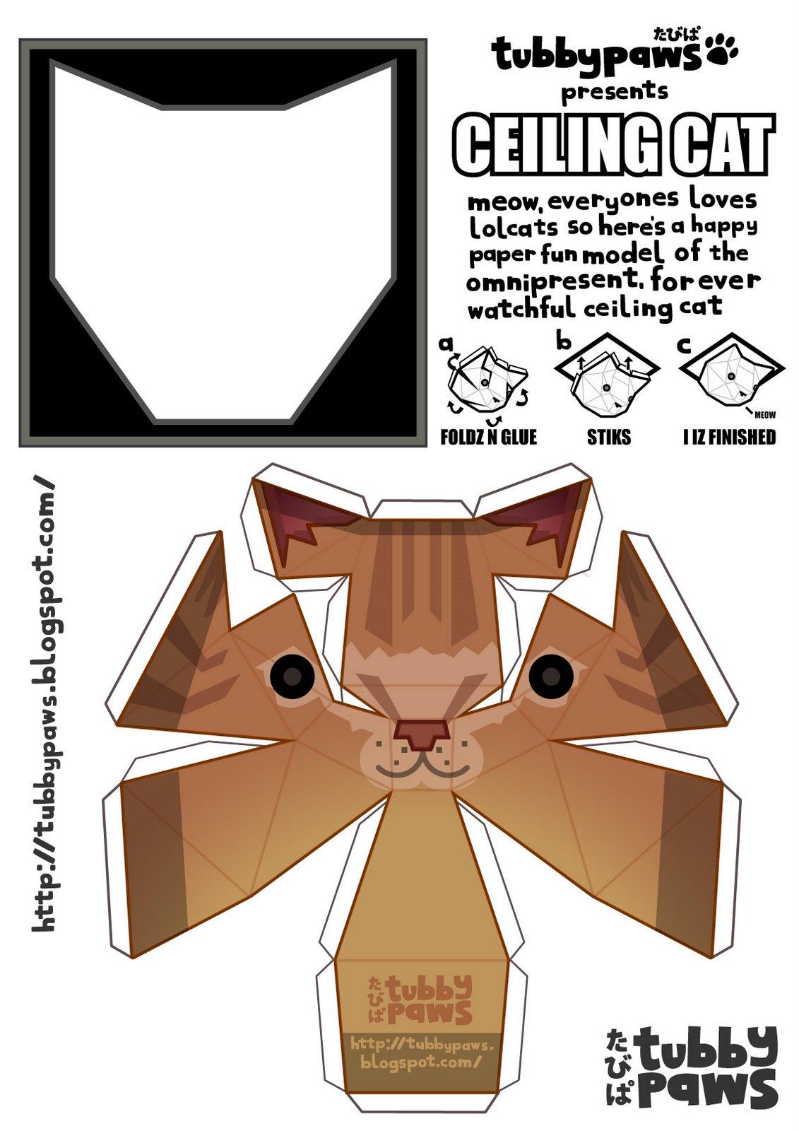 [ceiling_cat.jpg]