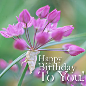 HappyBirthdayFlowers - ~ Happy Birthday Sheem 2011 ~