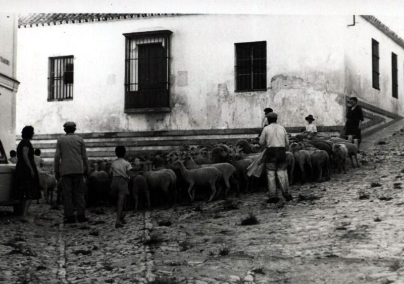 Portal de Correos - Historia
