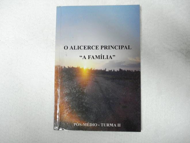 Livro - O Alicerce Principal a Família