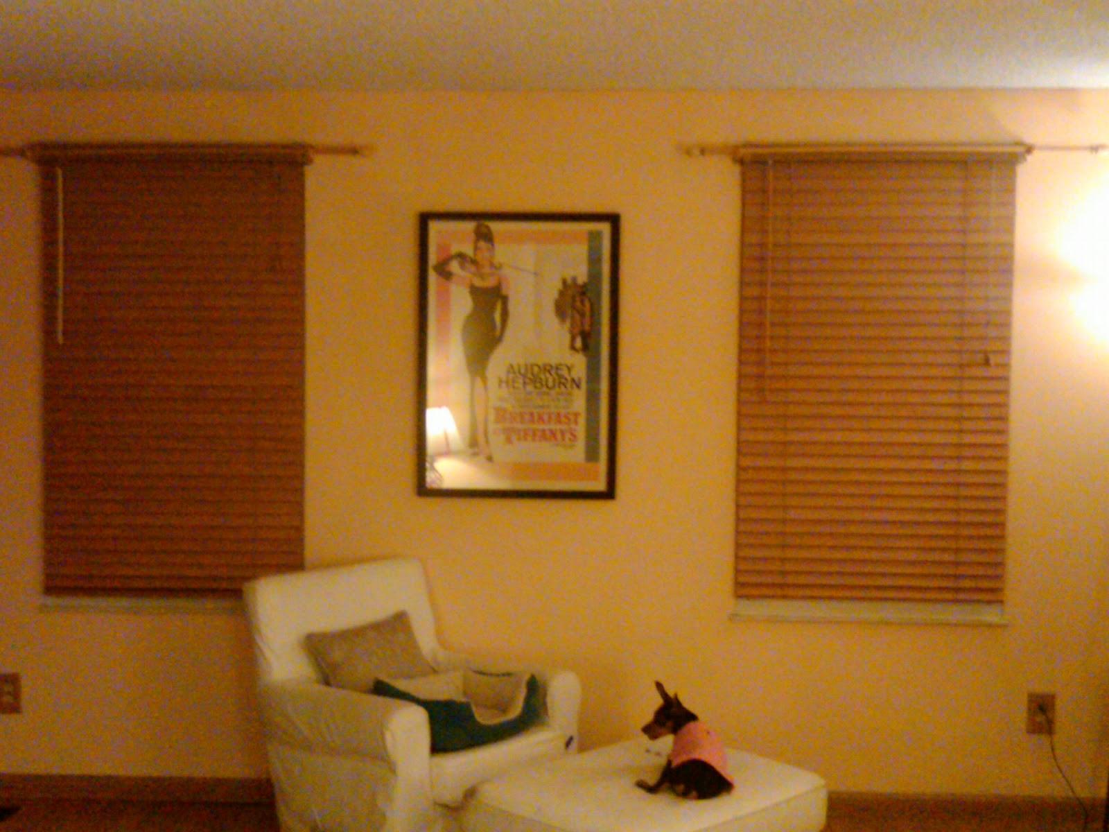 Chloe Corinne S House January 2011
