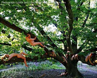 árboles roble naturaleza gente desnuda