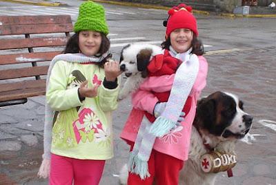 Cães São Bernardo do Centro Cívico, em Bariloche-AR