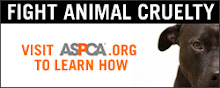 Help the ASPCA