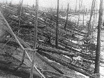 La foresta di Tunguska