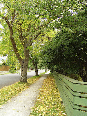 Autumn in Upper Hutt, New Zealand