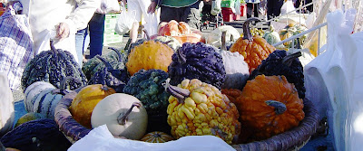 Gourds, River-Bank Market, Lower Hutt