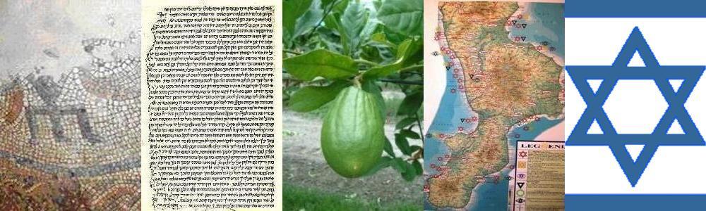 Jewish Calabria תידבוהי היראלאק