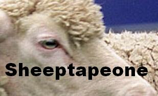 The Sheep Technique: SheepTapeOne