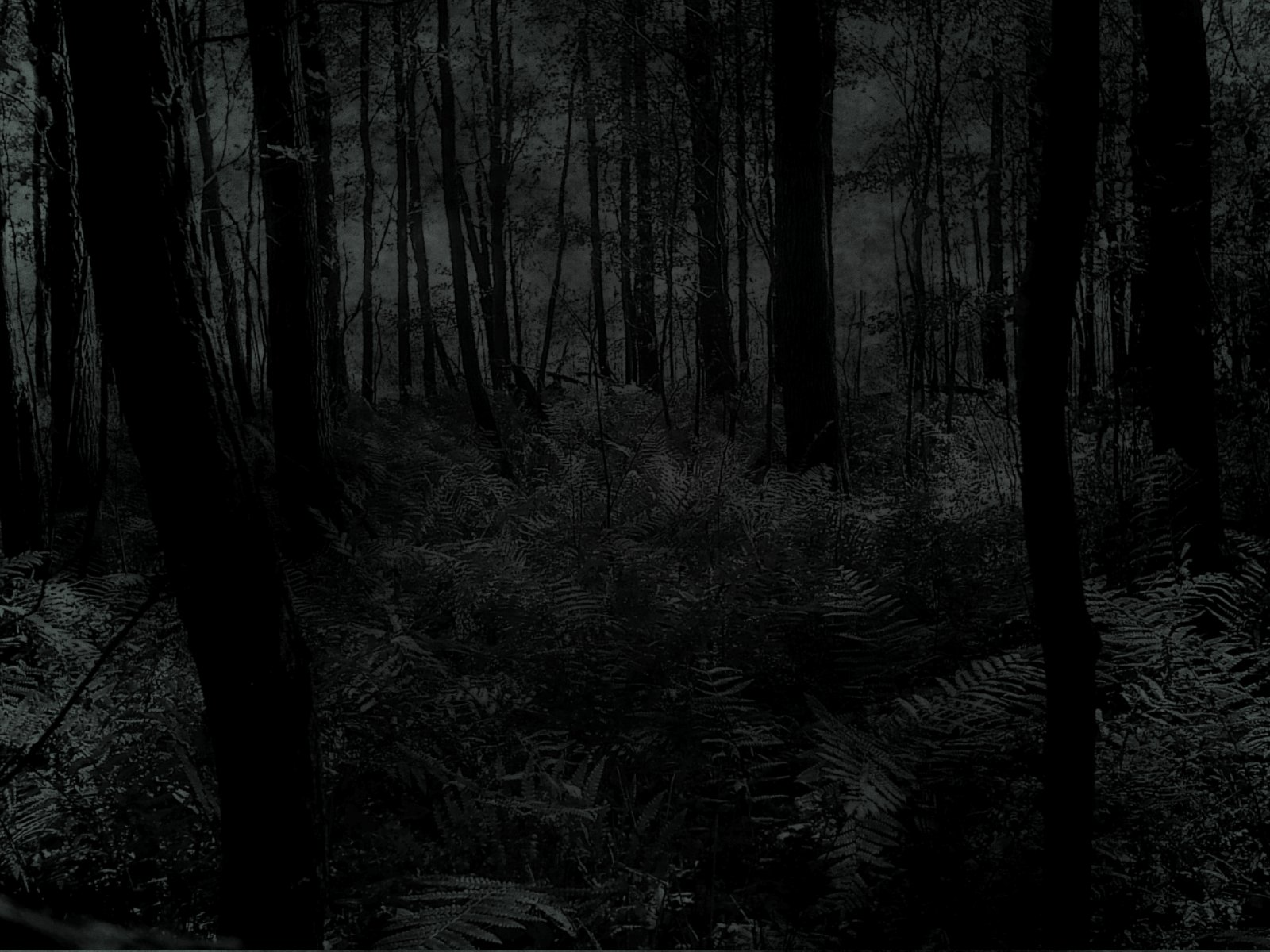 the darkness engulfs and - photo #38