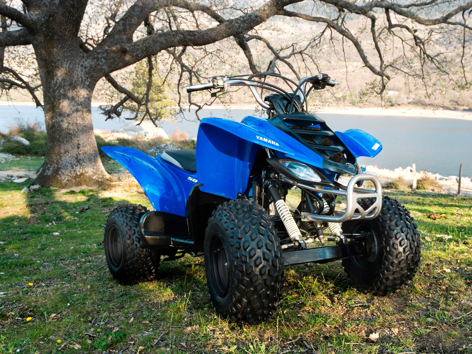 2008 YAMAHA YFM50 ATV pictures, specs, accident lawyers info