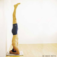 Salamba Sirsasana (Supported Headstand)