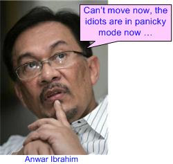 Anwar cannot checkmate