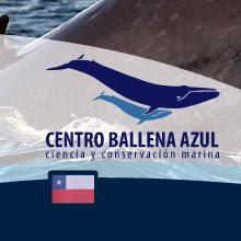 centro ballena azul